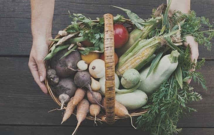Soup Cleanse Buying Considerations